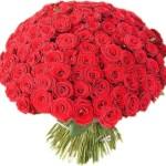 По какому поводу уместно подарить 101 розу?