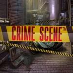 Описание игрового автомата Crime Scene